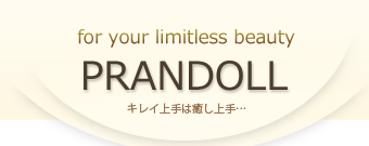 【PRANDOLL】プロンドール